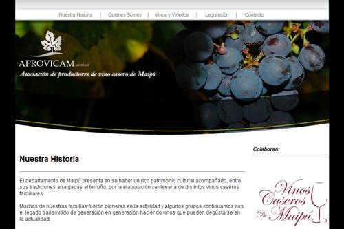 Aprovicam - Sitio web